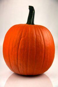 Pumpkin Pumper